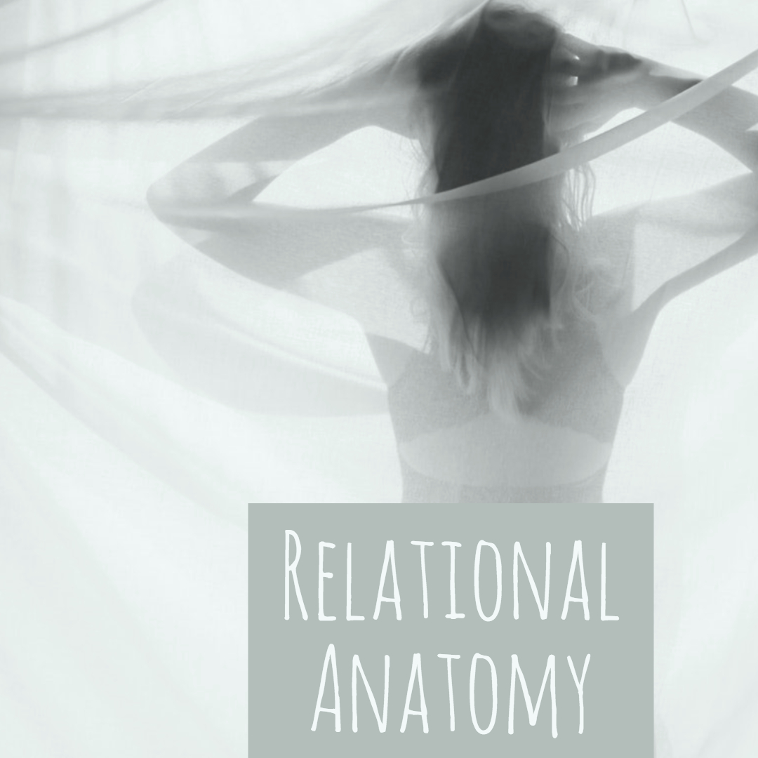 Relational Anatomy